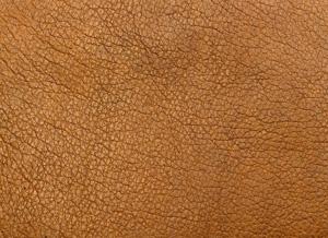 Как отличить натуральную кожу от экокожи?