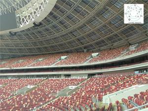 Экскурсия по стадиону «Лужники» от проекта «Москва глазами инженера»