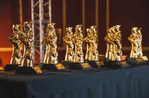 На второй конкурс «Золотой Трезини» принято 50 проектов