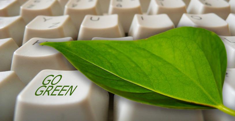 Экологическая акция «Зеленый офис 2019»