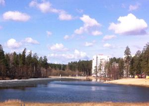 Конкурс на концепцию благоустройства рекреационной зоны «Лесная» в ЗАТО Заречный, Пензенская область
