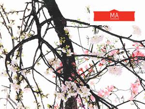 Выставка к 90-летнему юбилею школы Согэцу: «Пространство символов»