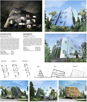 Проект дома «Инкогнито» с титановым покрытием