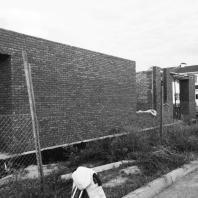 Дом в коттеджном посёлке «Солнечный». Ростовская область. Проект: Архитектурная студия «Чадо». Строительство 2014 год.