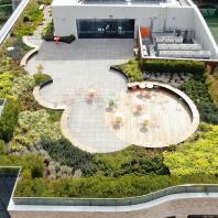 Лучший реализованный проект озеленения и ландшафтного дизайна. Сад на крыше в Методистском женском колледже (Австралия, Мельбурн), Taylor Cullity Lethlean (TCL)