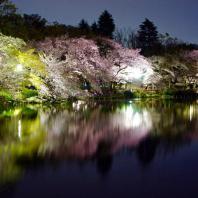 Токио. Парк Инокасира